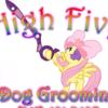 High Five Dog Grooming