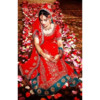 Asha's Photo Studios / Wedding Videography (Desi-Style Studio)